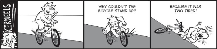 Kerneels Bicycle